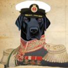 AdmiralThunder